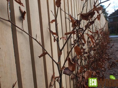 Eiken maatwerkschutting voor bostuin te Bilthoven met beukenhaag