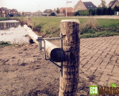 Robinia bosslagboom Friesland zijaanzicht